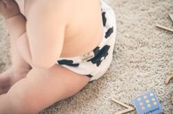 "Pocket diaper ""Cow"", double gussets"